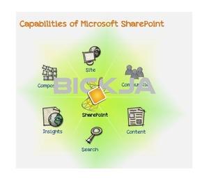 Adaacloud Provides SharePoint, Dynamics CRM, Dynamics AX, Dynamics Nav, Microsoft Office 365, Dyna