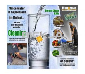 Move-in/out Deep/Steam Cleaning services in Dubai (Sanitize)