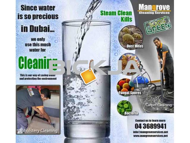 Move In Out Deep Steam Cleaning Services In Dubai Sanitize