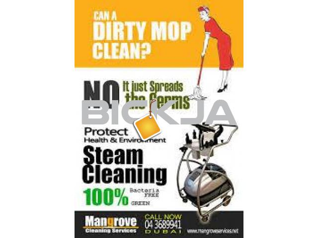Professional Residential Deep Cleaning Services Dubai